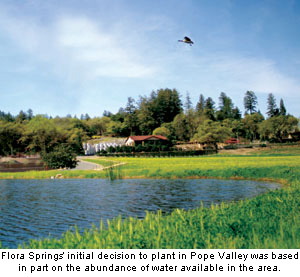 the initial decision to plant in the Pope Valley was due in part to an abundance of water
